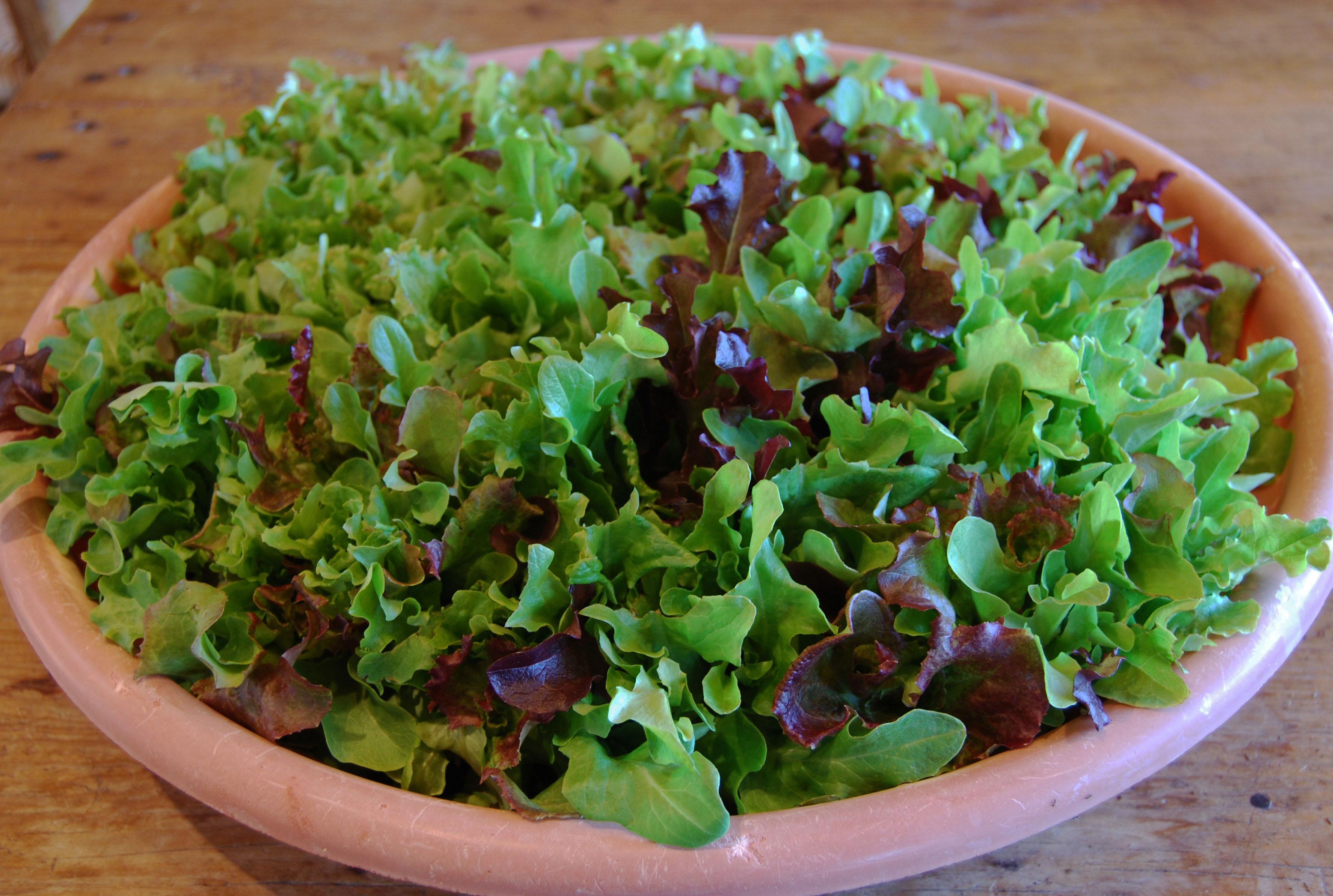 Image result for lettuce bowl