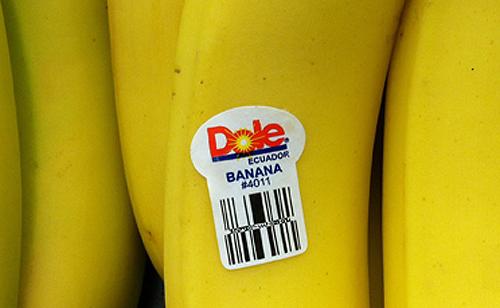 banana 4011