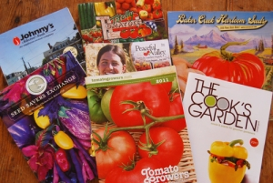 seed catalogs 2011