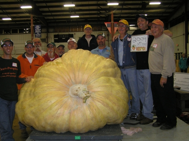 Ron Wallace set a new 2013 Giant Pumpkin World Record with this 2009 lb pumpkin!