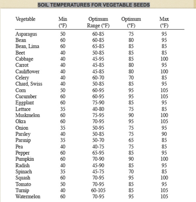 soil temperatures for veggie seeds