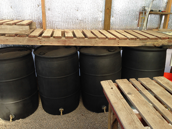 I painted the rain barrels black and filled them with  water to act as heat sinks