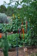 garden spears2