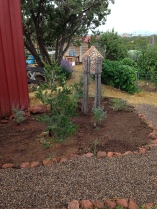 new bee garden by barn