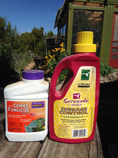 tomato fungicides