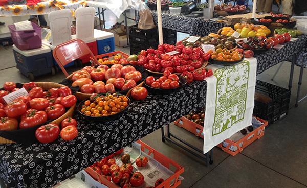 tomato lady at Santa Fe Farmer's Market