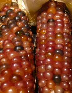 Glass Gem corn 3
