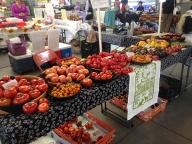 Tomato Lady tomatoes