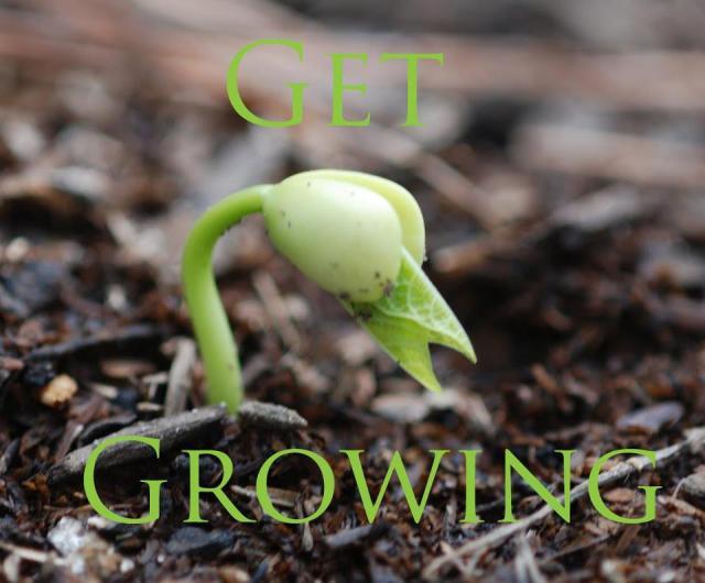 growfood,not lawns
