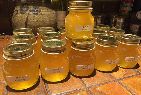 honey final_2015