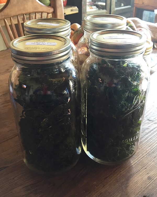 kale_dried in jars