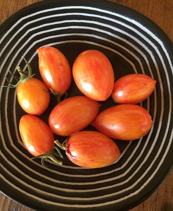 tomato_artisan blush tiger