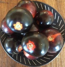 tomato_indigo cherry drops