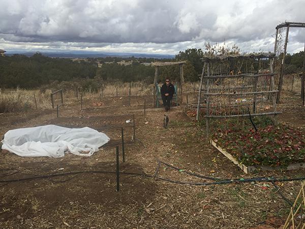 Nov garden 2015
