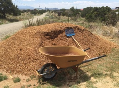 pile of wood chips-12 yards!