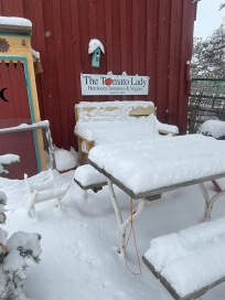 picnic table in winter by veggie garden 2021